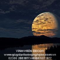 night_sky_moon_trees_river_reflection_95