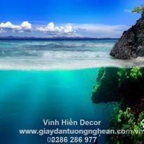 sea_coast_rocks_underwater_world_vegetat