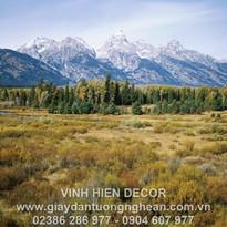 mountains_trees_autumn_grass_tops_fur-tr