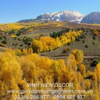 mountains_slopes_trees_yellow_autumn_573