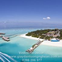 island_resort_land_ocean_palm_trees_azur