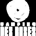 CDR_logo_blanc_128x128.png