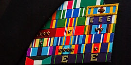 navy ribbons mounted