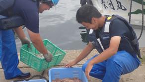 募集終了 R3「漁業アカデミー」研修生