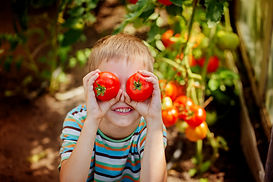 Portrait smiling boy holding red ripe to