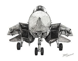 Grumman F-14D Super Tomcat - P&I