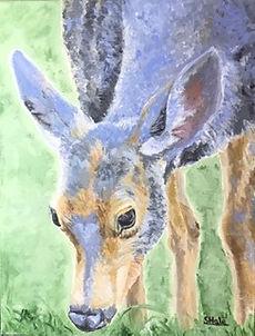 "Blue Deer, 11""x14"""