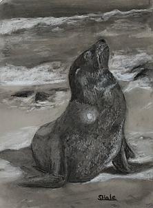 "Seal, 11""x14"""