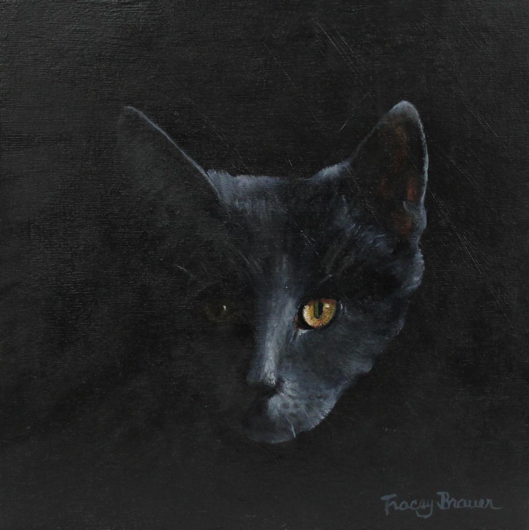 Artist: Tracey Brauer