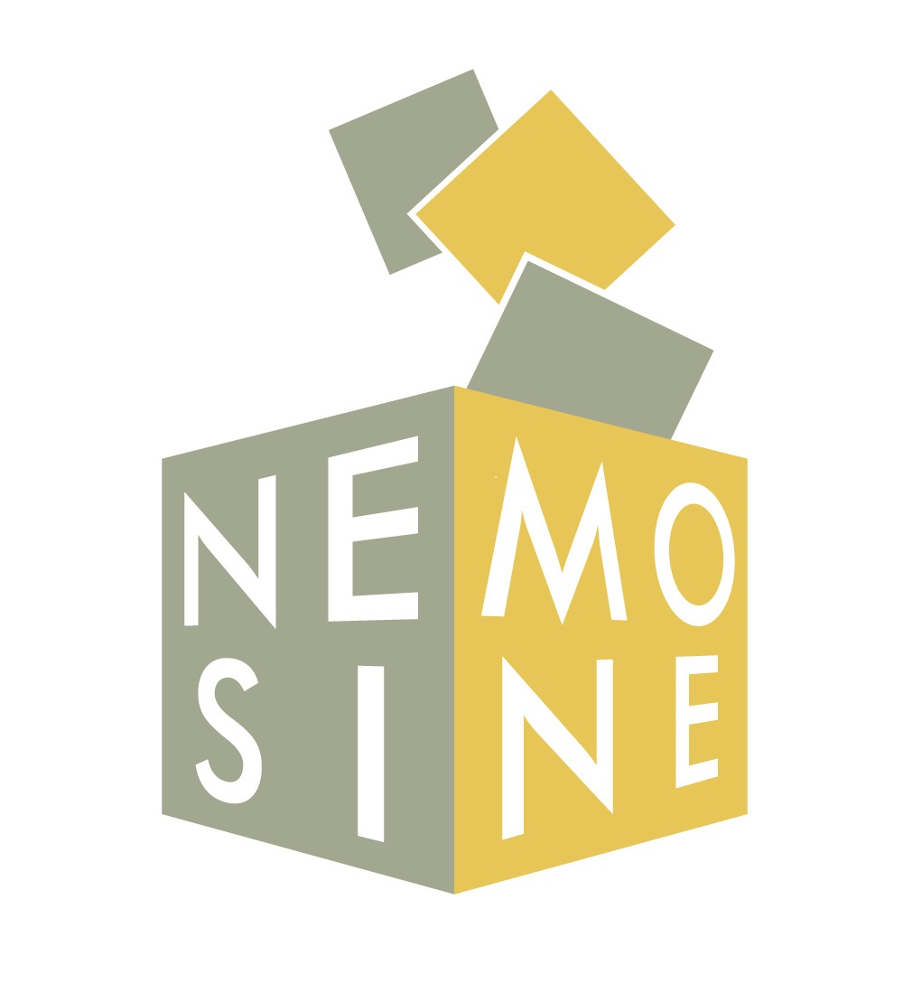 NEMOSINE - Innovative packaging solutions for storage and conservation of 20th century cultural heritage of artefacts based on cellulose derivate