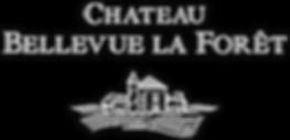 Chateau bellevue la foret
