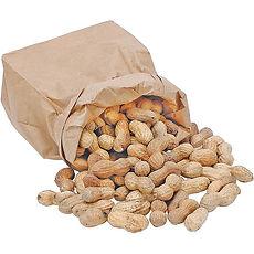 bag-of-peanuts-in-shell.jpg