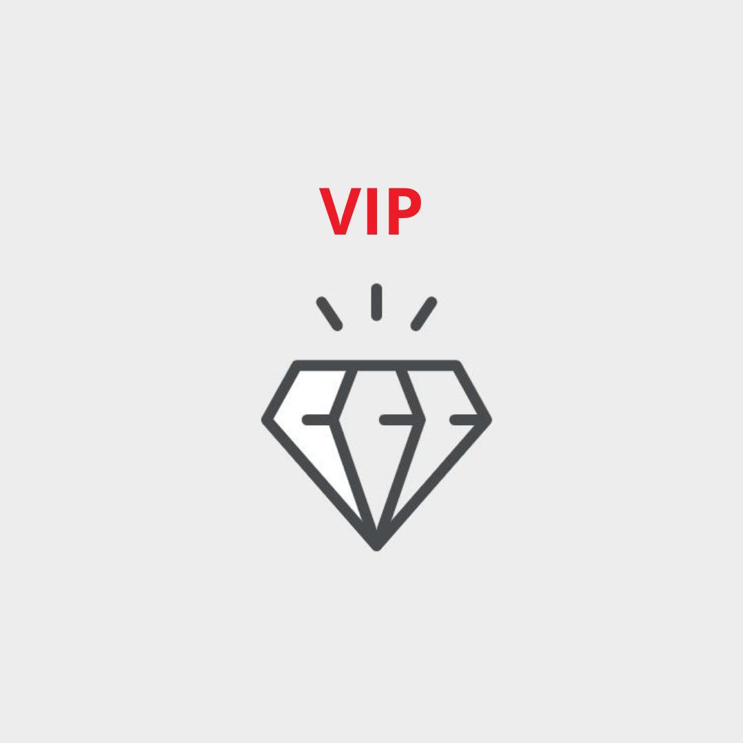 Professional Planning Service: VIP