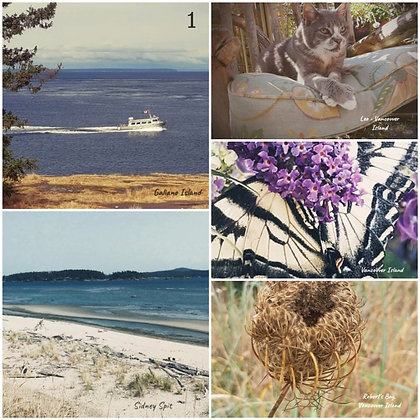 island rain postcards - collection 1 or 2 - postcard only