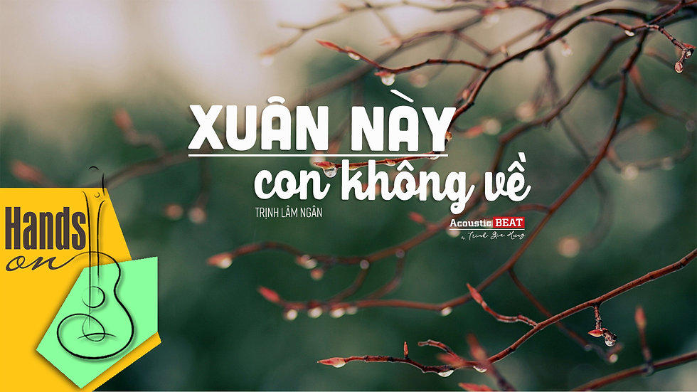 Xuân này con không về » Trịnh Lâm Ngân ✎ acoustic Beat by Trịnh Gia Hưng