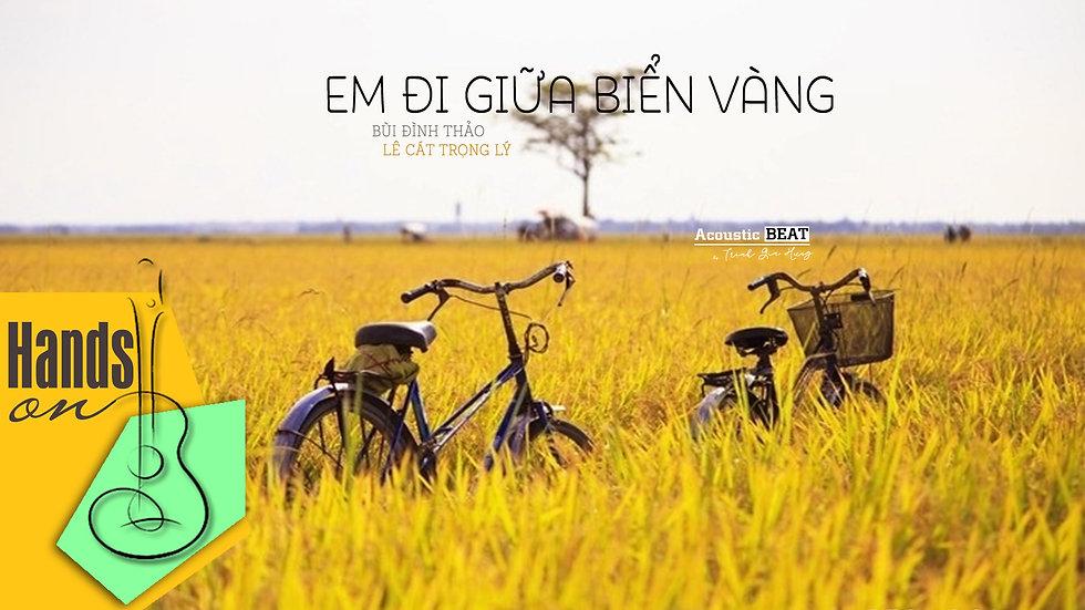 Em đi giữa biển vàng - Lê Cát Trọng Lý - acoustic Beat by Trịnh Gia Hưng