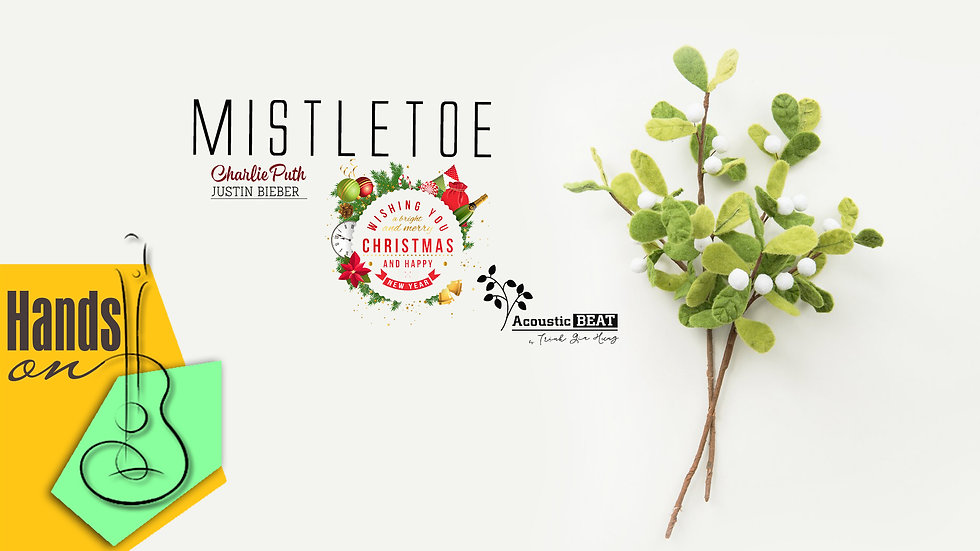 Mistletoe » Charlie Puth ✎ acoustic Beat by Trịnh Gia Hưng
