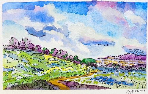 Southern California Meadow
