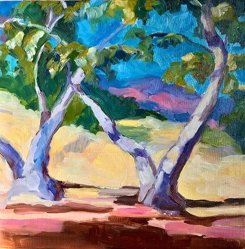 Plein Air Style Southern California Trees, in homage to Edgar Payne