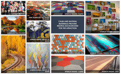 LITTLE CANADA Attraction- TORONTO- Materials Inspiration Boards
