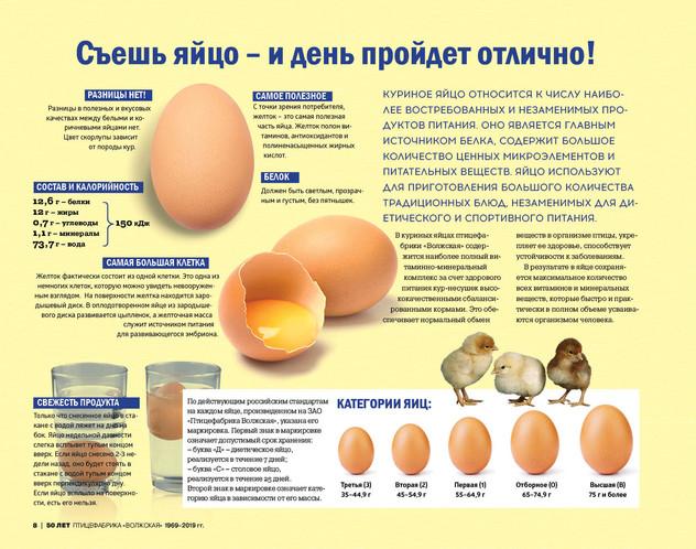 птицефабрика8.jpg