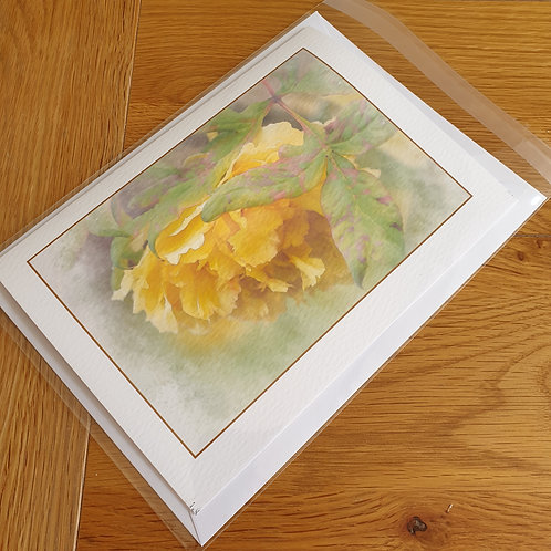 Yellow Camellia greeting card /wall art/notelet