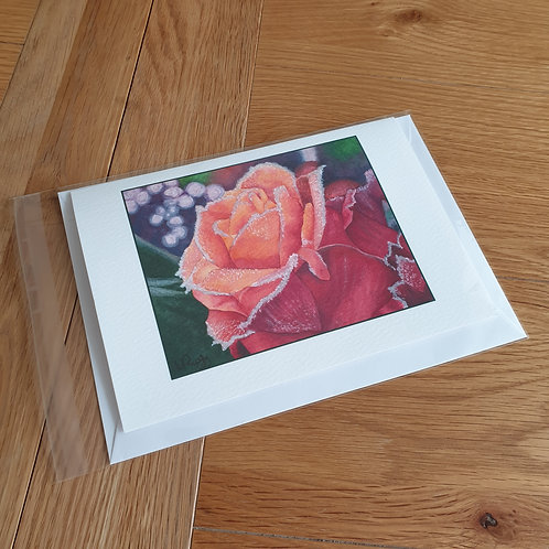 Frosty Rose  greeting card /wall art/notelet
