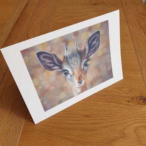 Dik Dik greeting card /wall art/notelet