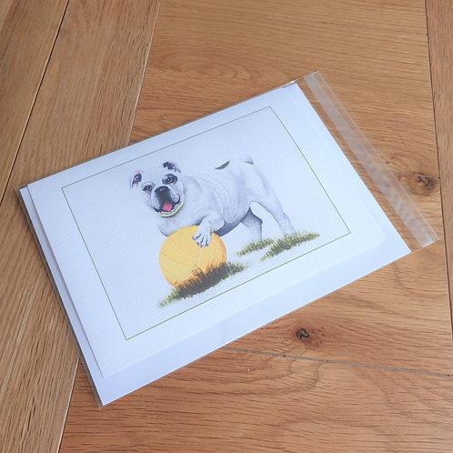Bulldog with Football  greeting card /wall art/notelet