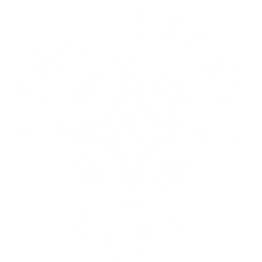 The Placks logo - White.png
