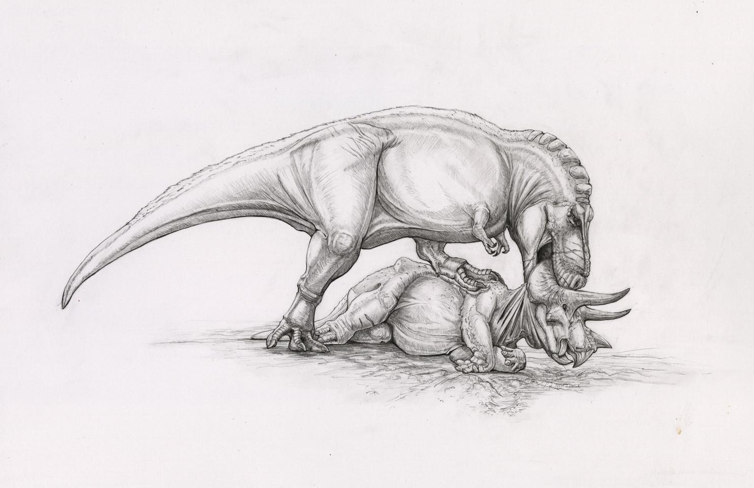 Feeding habits of T. rex