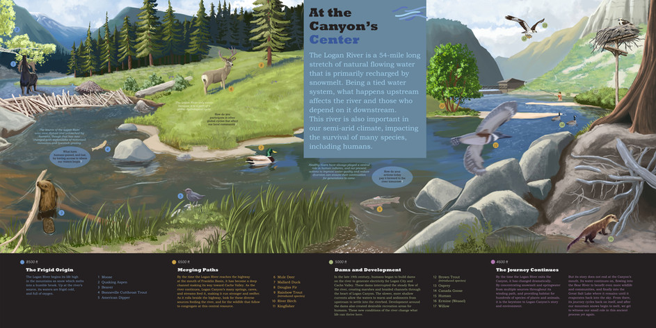 hydrology_background_graphics_FINAL.jpg