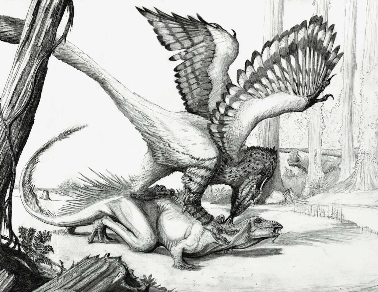 Raptor prey Restraint (as demonstrated by Deinonychus)