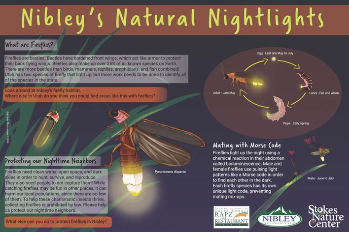 Nibley's Natural Nightlight