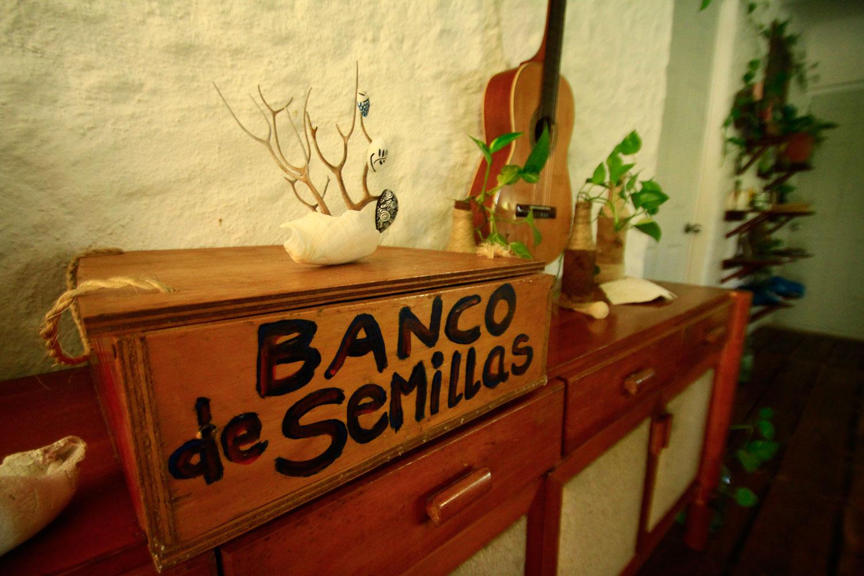 Banco de semillas.jpg