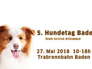 Hundetag in Baden