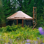 Yurt - The Burrow