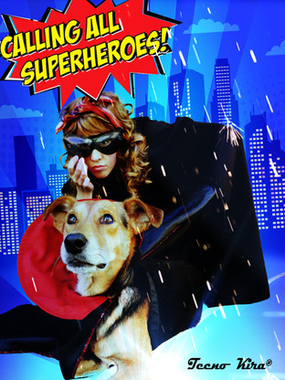 The Superhero Pet