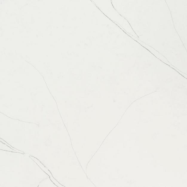 MSI Quartz Calacatta Trevi (126X77)