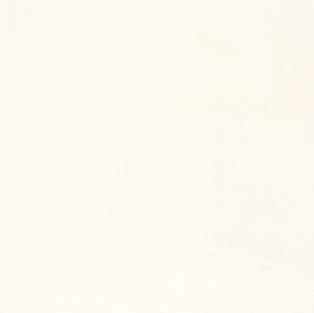 Vivid White-1111 (P-J)