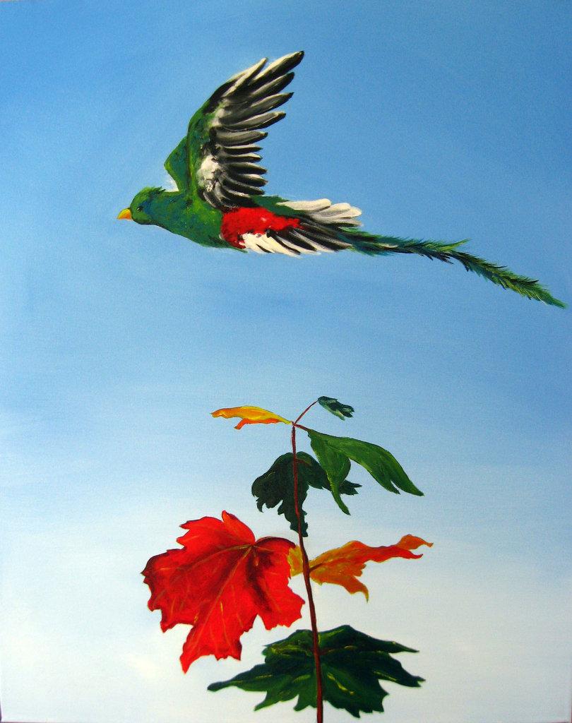 Quetzal Over Canada