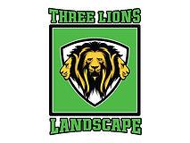 3-lions.jpg