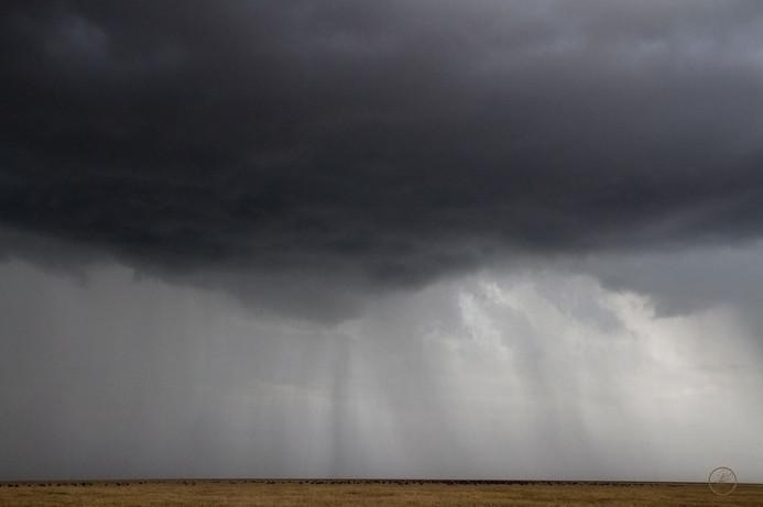 Gewitter über der Serengeti