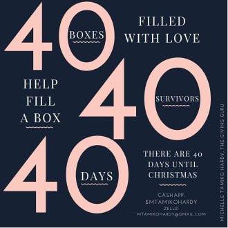 Campaign Donations for 40 Boxes 40 Survivors 40 Days