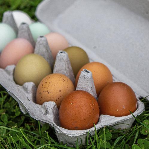 Rainbow Hatching Eggs