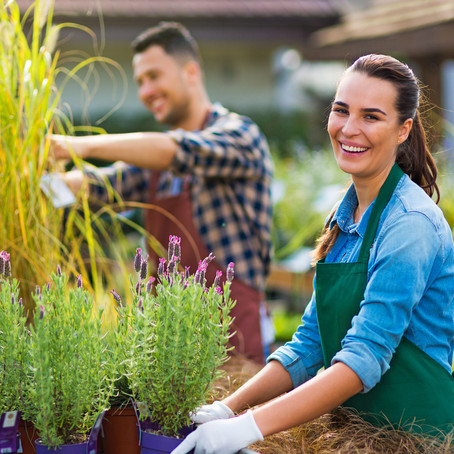 Choose The Right Landscaping Partner