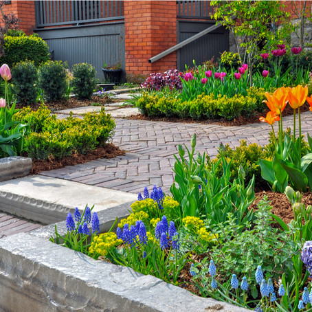 Choosing The Right Flowers For Your Landscape