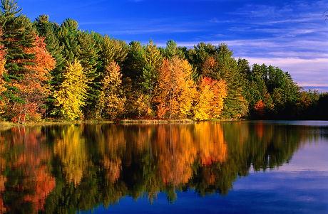 New England Landscape.jpg