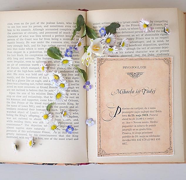 Vabilo vintage knjiga.jpg