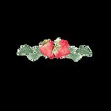 Logo za splet.png